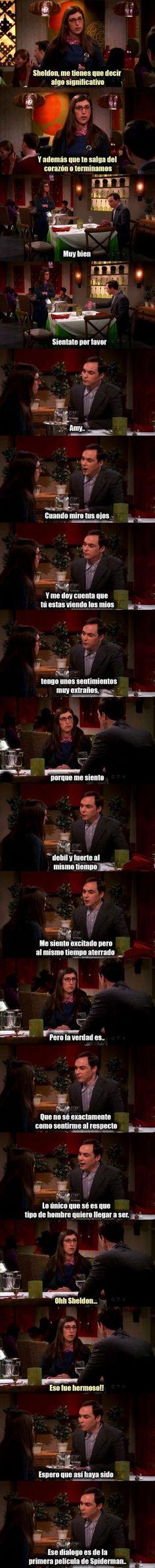 Meme_otros - Sheldon es todo un poeta, PERO TIENE UN SECRETO