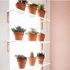 Perfect Acrylic Shelving And Cheap Hardware Store Brackets Painted Gold