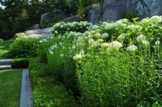 Design By Robin Kramer Garden Design.
