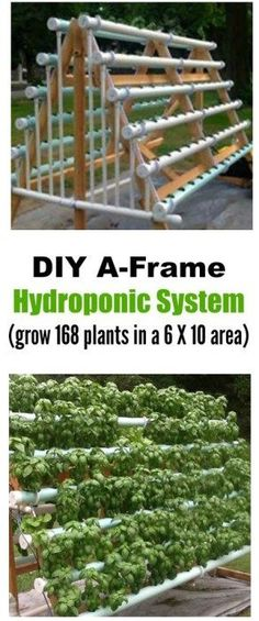 DIY Vertical A-Frame Hydroponic System