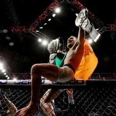 Como las Artes Marciales Mixtas están noqueando al boxeo