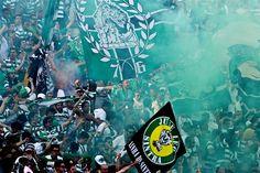 Resultado de imagem para sporting taça de portugal 2015