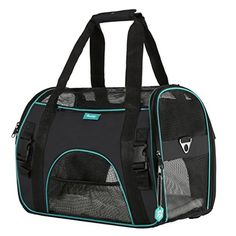 Dog Carriers - Pet Carrier for Dogs  Cats by PAWDLE Comfort Airline Approved Travel Tote Soft Sided Bag Medium Black *** Continue to the product at the image link. (This is an Amazon affiliate link)