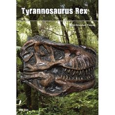 Amazon.com: (DM 324) T-Rex Skull Plaque: $20. Tyrannosaurus was a large predatory dinosaur that lived in the Upper Cretaceous 65 million years ago. The adult Tyrannosaurus was up to 42 feet long, and weighed about 6 tons. The teeth of the Tyrannosaurus were up to 12 inches long. They were found on the North American continent.   The Tyrannosaurus or T-Rex was a carnivore. The T-Rex was probably both a hunter an scavenger.
