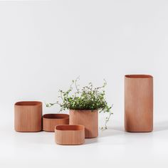 COBE bases collection of ceramic plant pots on its own building