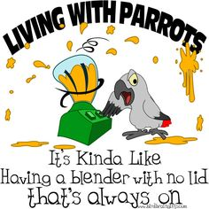 Living With Parrots