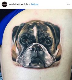 Get some ideas for your next tattoo design by browsing the Boxer dog tattoo gallery. Boxer Dog Tattoo, Dog Tattoos, Beautiful Dogs, Animals Beautiful, Amazing Dogs, Boxer Dog Puppy, Dog Memorial Tattoos, Dog Corner, Dog Stories