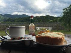 自然豊かな景色のカフェ