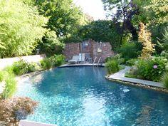 Schwimmteich Freie Form Salzwasser im Garten Salzelektrolyse