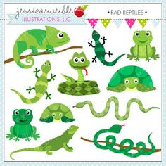Reptile Party Decorations Frog Birthday Snake by bcpaperdesigns