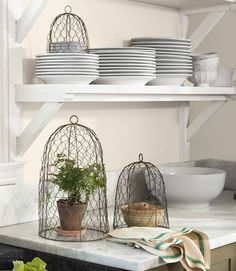How perfect are these chicken wire cloches? Love the simplicity.