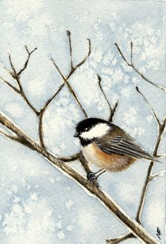 From the Studio of Madelaine: Snowy Perch - Bird #45
