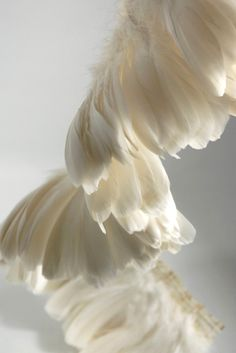 """6"""" White Goose Strung Parried Nageoires 36"""" long $16  Would love to see this on a custom round table linen"""