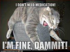 I'm fine, really!