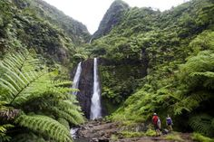 Tahiti, Destinations, Waterfall, Points, Comme, Islands, Landscapes, Outdoor, Travel