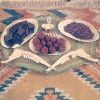 Theobroma cacao  Sacred Chocolate Ceremony  La Abeja Herbs  http://femaleandfungi.com/2013/12/17/meeting-medicinal-mushrooms-with-sophia-rose/