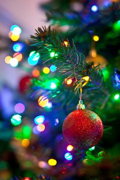 A Blue Blue Blue Christmas. Bokeh Decorations Read more Christmas Bokeh Read more Can't wait for Christmas. Christmas Time Is Here, Merry Little Christmas, Noel Christmas, Christmas Photos, Winter Christmas, Xmas, Christmas Crafts, Victorian Christmas, Christmas Colors