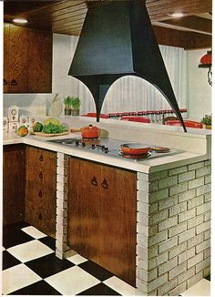 60's kitchen  From The Practical Encyclopedia of Good Decorating and Home Improvement.