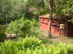 Churchville Nature Center Events