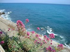 Beautiful sea view from cycle path San Remo italy