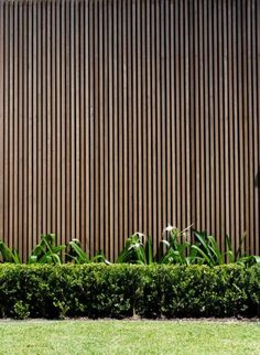 Garden Screening Ideas - Screening could be both decorative and functional. From a well-placed plant to maintenance free fence, below are some creative garden screening ideas. Timber Battens, Timber Screens, Timber Fencing, Timber Cladding, Cladding Ideas, Wood Slats, Privacy Screens, Screen House, Garden Screening