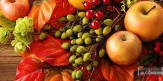 ¡Prepárate para el otoño! - #nutrición #Aptonia #Decathlon #Otoño