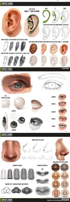 Eye drawing digital art New Ideas Digital Painting Tutorials, Digital Art Tutorial, Painting Tips, Art Tutorials, Digital Paintings, Drawing Tutorials, Eye Painting, Tutorial Draw, Eye Tutorial