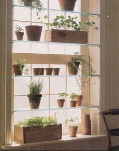 Shelf in front of window idea. Obviously, you wouldn't put plants on yours