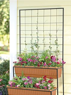 2-tier Self-watering Planter Kit
