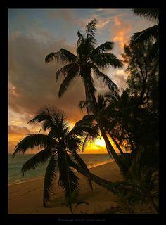 Rarotonga Island - Cook Islands