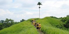 Rice Paddy Trekking -  Campuhan Ridge Walk