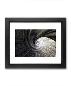 I love items that represent more than one possible object. Reminiscent of a shell, this winding staircase is beautifully composed and allows the imagination of the viewer to climb to new heights.  Find the Nautilus Staircase Print, as seen in the Prints Collection at http://dotandbo.com/category/decor-and-pillows/for-the-wall/prints?utm_source=pinterest&utm_medium=organic&db_sku=SO60039