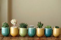 Un pequeño jardín en casa   La Bici Azul: Blog de decoración, tendencias, DIY, recetas y arte
