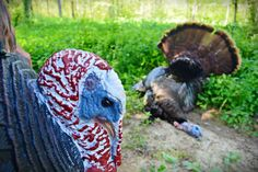 10 Essential Items You Should Have Before Turkey Season!
