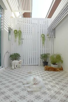 Charm back yard Home Room Design, Laundry Room Design, Home Interior Design, Exterior Design, Living Room Designs, House Design, Outdoor Laundry Rooms, Dirty Kitchen, Home Budget