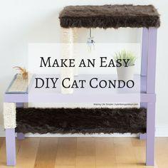 Make a Cat Condo