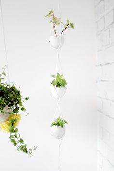 DIY Hanging Egg Planter via Fall For DIY. These would be fun with ostrich egg shells.
