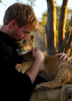 Unbelievable Reaction of a Lioness to the Man Who Saved Her Life