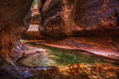 The Subway: Zion National Park, Utah