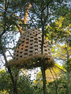 Sculpture 12, A Year in a French forest, 2013