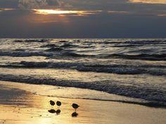Canada's Top 10 Beaches-Grand Bend, Ontario