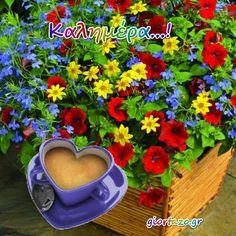 Καλημέρα ...giortazo.gr - Giortazo.gr Plants, Sayings And Quotes, Plant, Planets