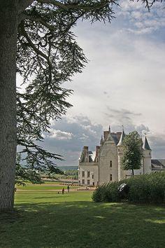Chateau d'Amboise, France Chateau De Blois, Chateau Versailles, Oh The Places You'll Go, Places To Travel, Places To Visit, Chateau De Maintenon, Amboise France, Wonderful Places, Beautiful Places