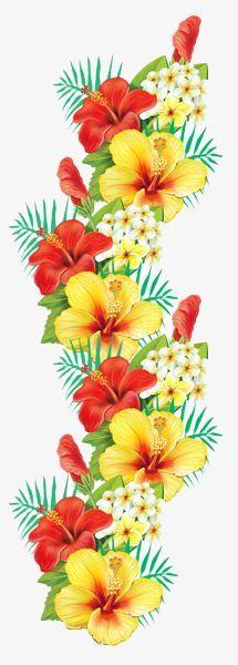 Gallery - Recent updates Exotic Flowers, Tropical Flowers, Beautiful Flowers, Hibiscus Flowers, Illustration Botanique, Clip Art, Flower Bird, Flower Clipart, Arte Floral