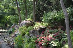 boulder-and-stone-natural-shade-garden-ideas-allendale-nj---nj.jpg 800×530 pixels