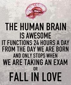 The human brainy