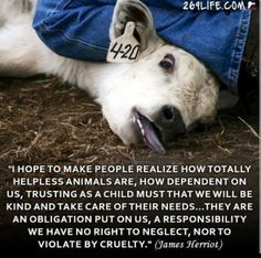 James Harriot. We have an obligation to care for animals. That means not eating or exploiting them. Please don't participate in cruelty
