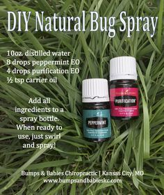 An all-natural essential oil bug spray that you can make at home! This recipe is made from Young Living essential oils and has been deep woods tested! If you are looking for a natural alternative to store-bought bug repellents, look no further! || Bumps & Babies Chiropractic, Kansas City, MO