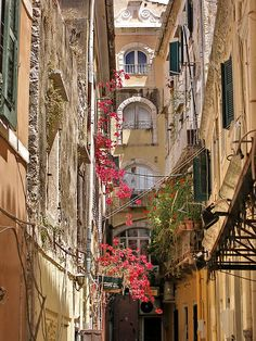 Corfu, Greece. (by Corfu Town) my favourite place. I will live here one day x