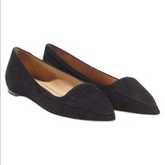 """NWB Salvatore Ferragamo Pemina black comfy flats Sold out everywhere! Collection SS 2014, 100% authentic, brand new with box DETAILS: * Salvatore Ferragamo * Pointed Toe * Leather Lining * Leather Sole * """" Heel * Made In Italy * Suede Salvatore Ferragamo Shoes Flats & Loafers"""